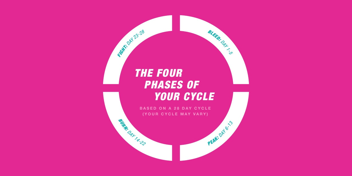 1230x615_Four-phases-cycle.png