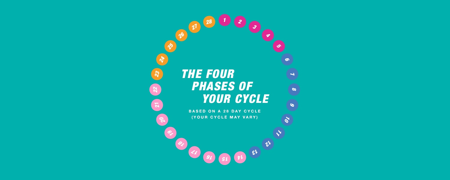 Image of the four phases of your cycle - Libresse