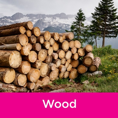 Wood Quiz